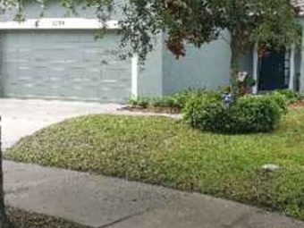 Lawn Mowing Contractor in Tampa, FL, 33605