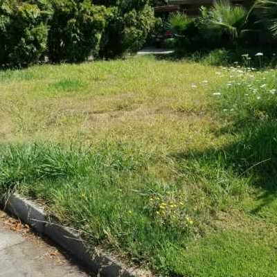 Lawn Mowing Contractor in Vancouver , WA, 98686