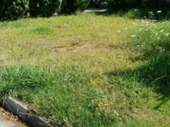 Lawn Mowing Contractor in Riverside, CA, 92505