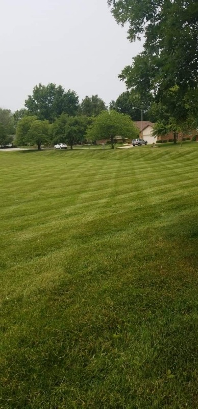 Lawn Mowing Contractor in Collinsville, IL, 62203