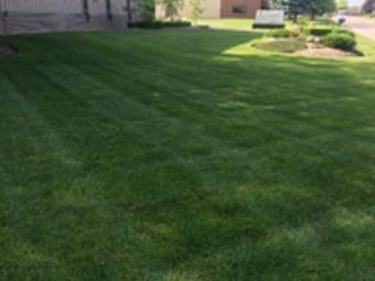 Lawn Mowing Contractor in Warren, MI, 48091
