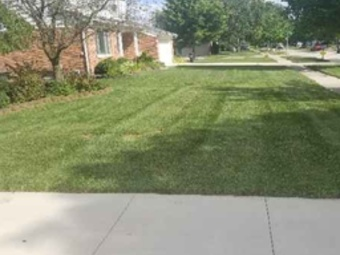 Lawn Mowing Contractor in Center Line, MI, 48015