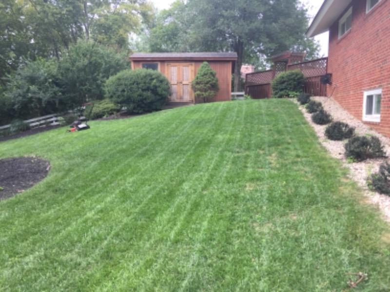 Lawn Mowing Contractor in Alexandria, VA, 22308