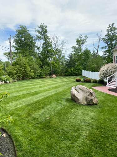 Lawn Mowing Contractor in Berkeley Township, NJ, 08721