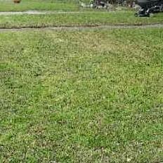 Lawn Mowing Contractor in San Antonio, TX, 78240