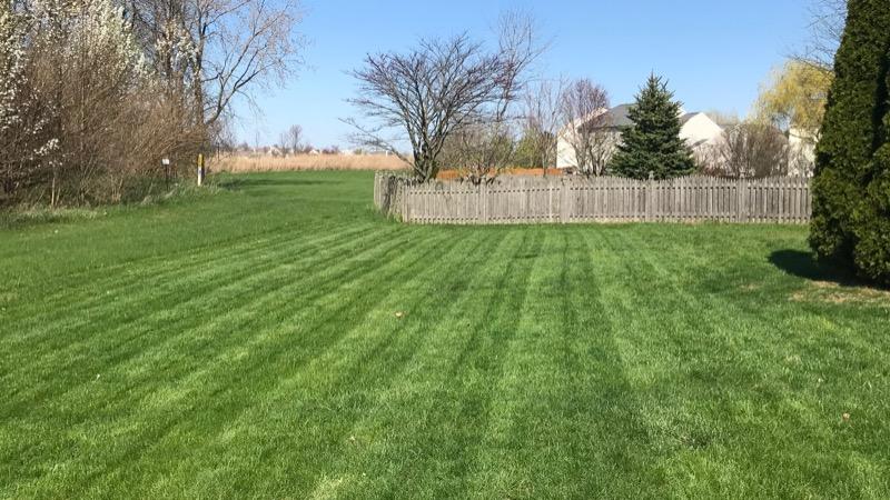 Lawn Mowing Contractor in Westfield, IN, 46074