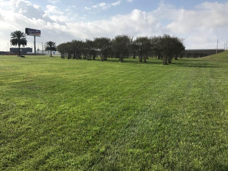 Lawn Mowing Contractor in Seabrook, TX, 77586