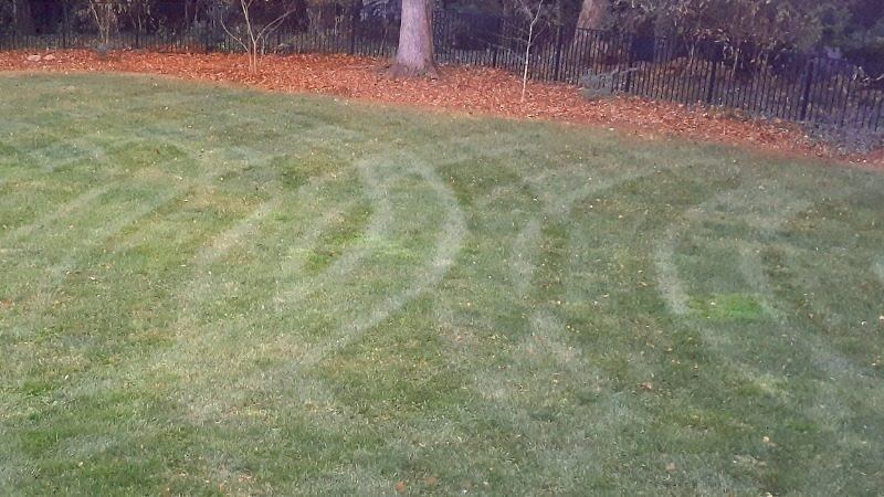 Lawn Mowing Contractor in Monroe, NC, 28110