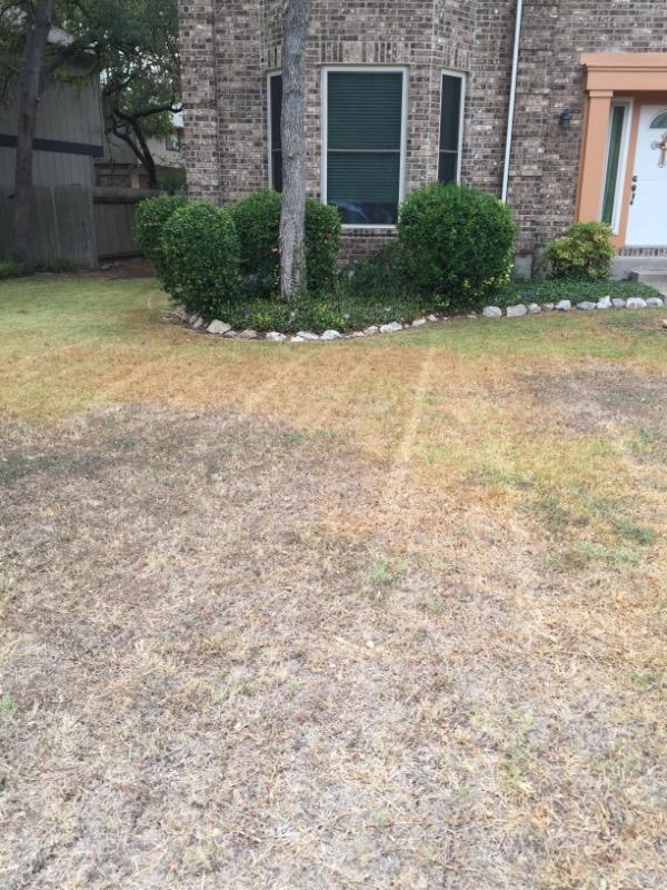 Lawn Mowing Contractor in Cedar Park, TX, 78613