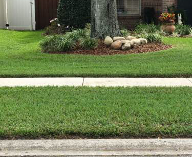 Lawn Mowing Contractor in Jacksonville, FL, 32223