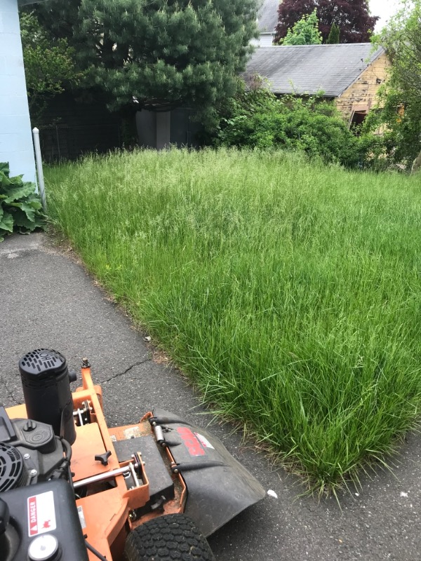 Lawn Mowing Contractor in Shelton, CT, 06484