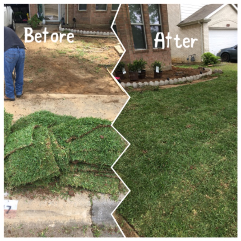 Lawn Mowing Contractor in Garland, TX, 75044