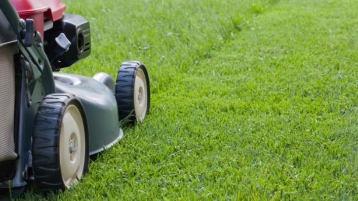 Lawn Mowing Contractor in Stafford, TX, 77477
