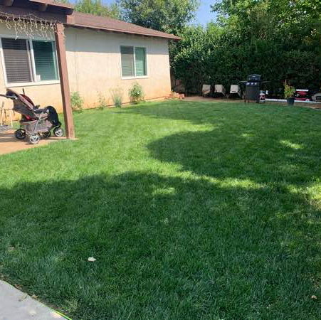 Lawn Mowing Contractor in Beaumont, CA, 92223