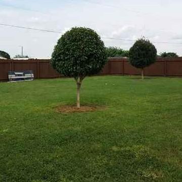Lawn Mowing Contractor in Weslaco, TX, 78599