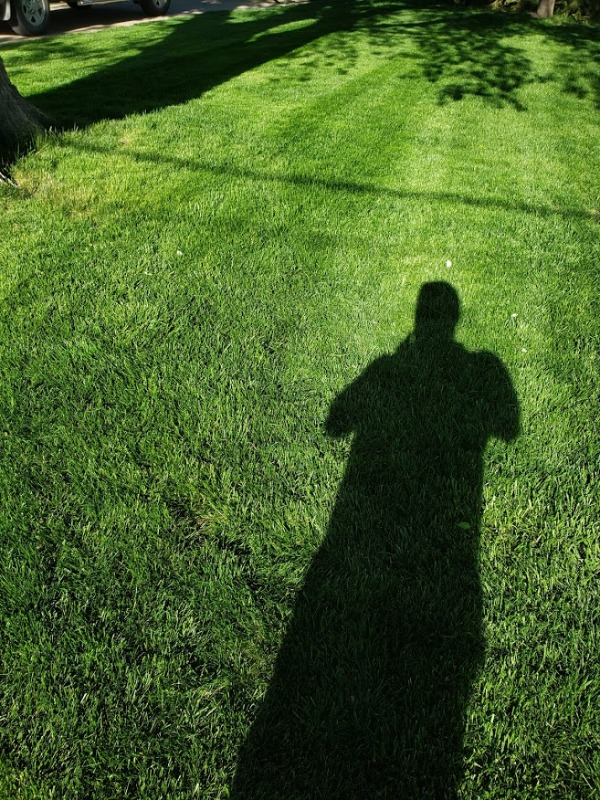 Lawn Mowing Contractor in Council Bluffs, IA, 51501