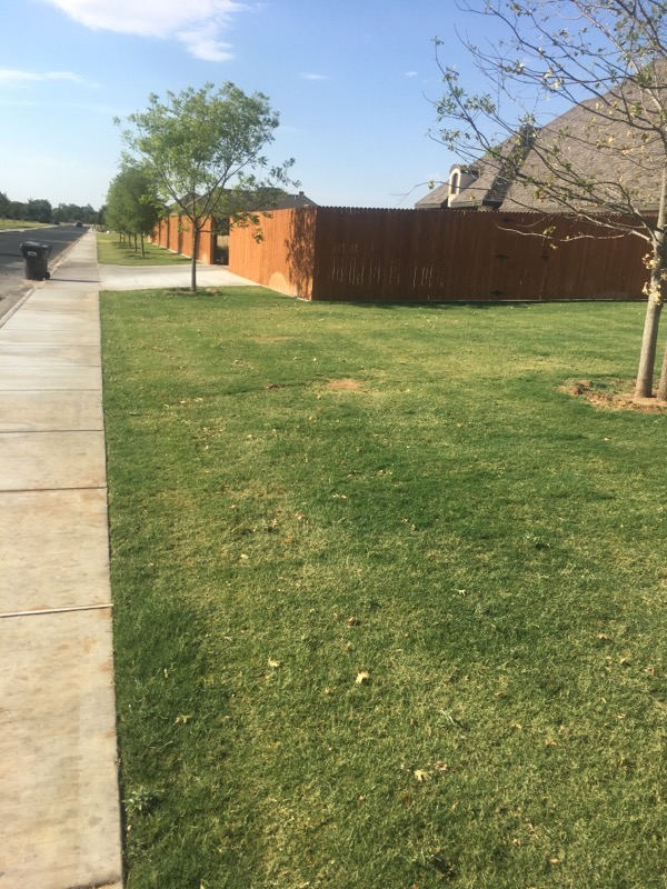 Lawn Mowing Contractor in Midland, TX, 79705