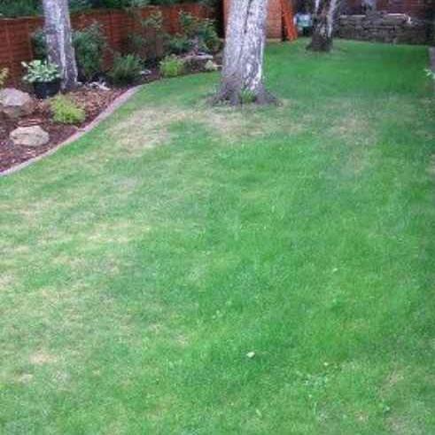 Lawn Mowing Contractor in Sugar Hill, GA, 30518