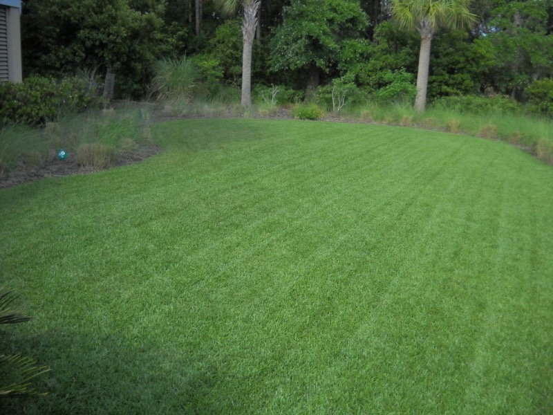 Lawn Mowing Contractor in Nashville, NC, 28056