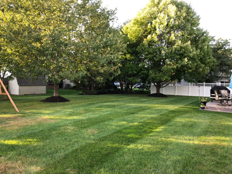 Lawn Mowing Contractor in Sheffield, OH, 44054
