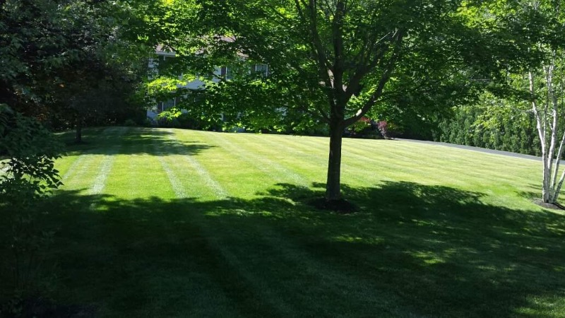 Lawn Mowing Contractor in Indianapolis, IN, 46037