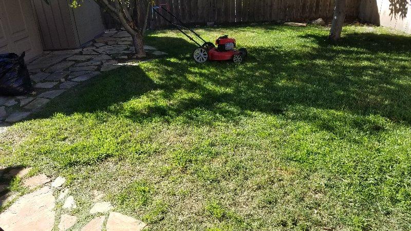 Lawn Mowing Contractor in Bonita, CA, 91902