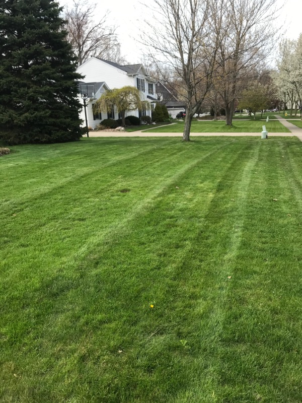 Lawn Mowing Contractor in Lakewood, OH, 44012