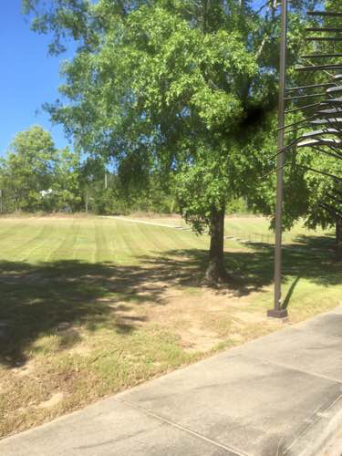 Lawn Mowing Contractor in Columbia, SC, 29210
