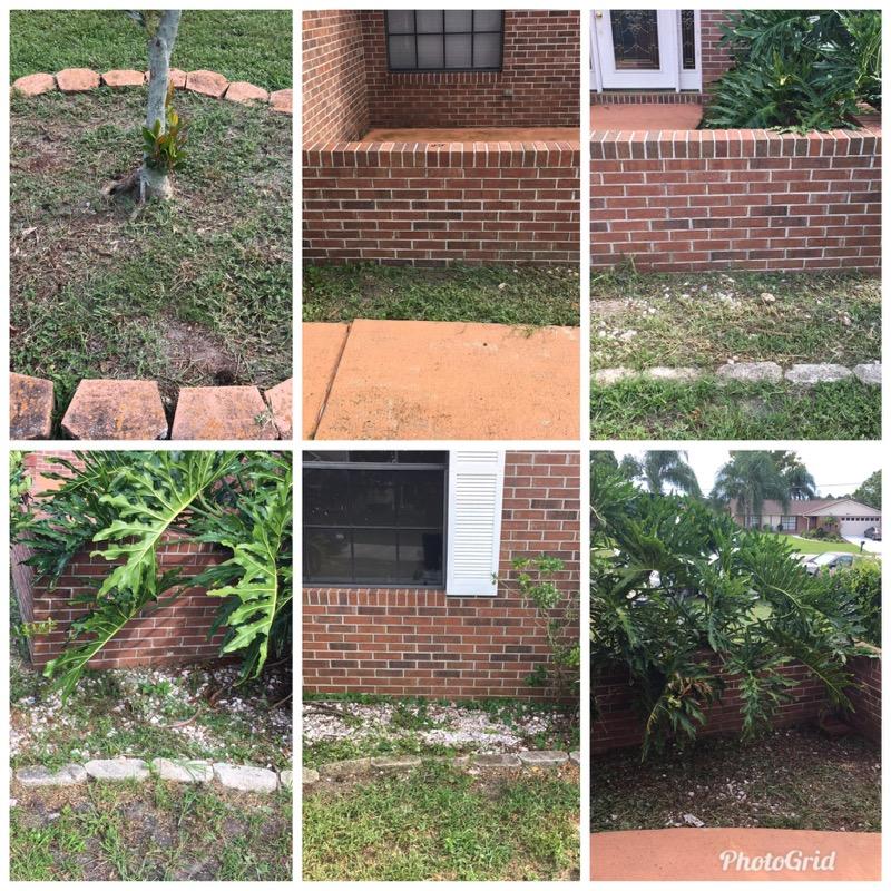 Lawn Mowing Contractor in Deltona, FL, 32725