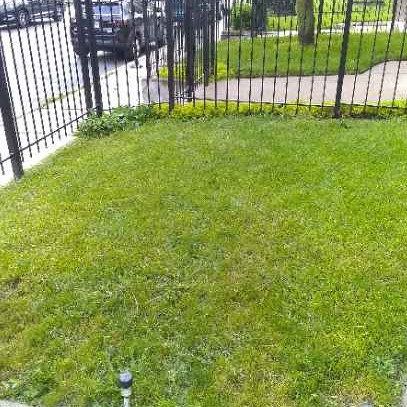 Lawn Mowing Contractor in Chicago, IL, 60607