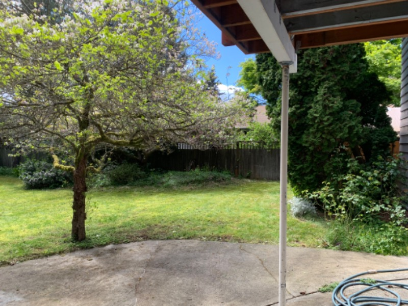 Lawn Mowing Contractor in Seattle, WA, 98115
