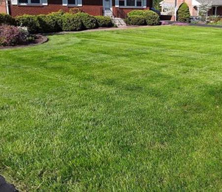 Lawn Mowing Contractor in Nashville Davidson, TN, 37076