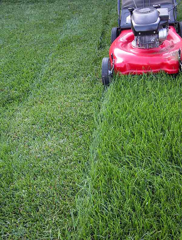 Lawn Mowing Contractor in Valley Park, MO, 63088