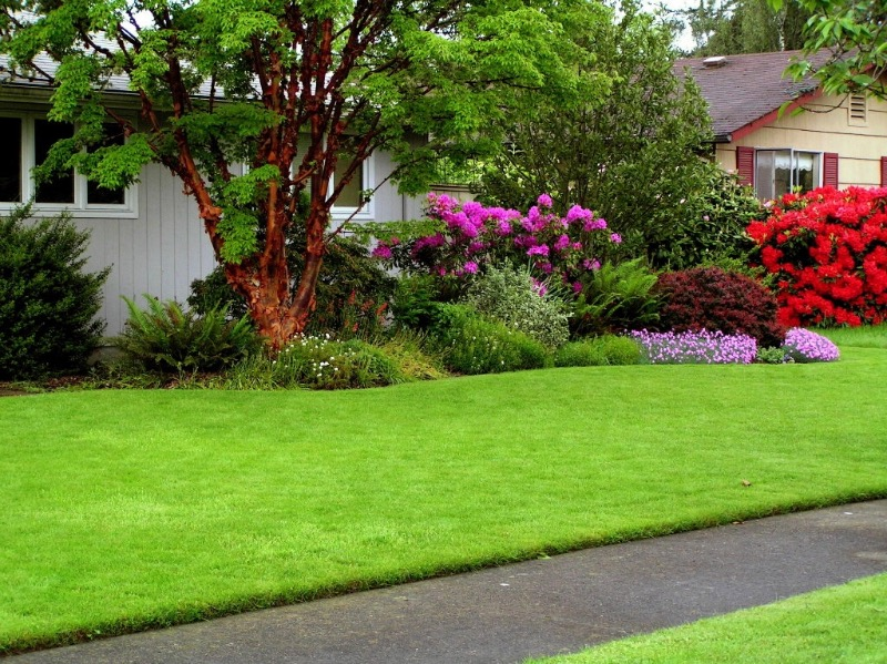 Lawn Mowing Contractor in Fort Wayne, IN, 46805