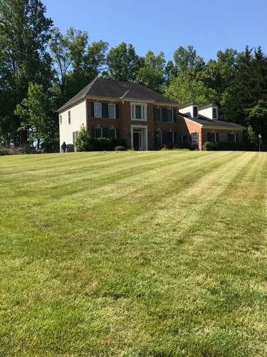 Lawn Mowing Contractor in Annapolis, MD, 21403