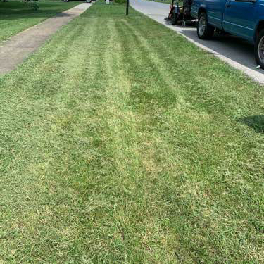 Lawn Mowing Contractor in Louisville, KY, 40299