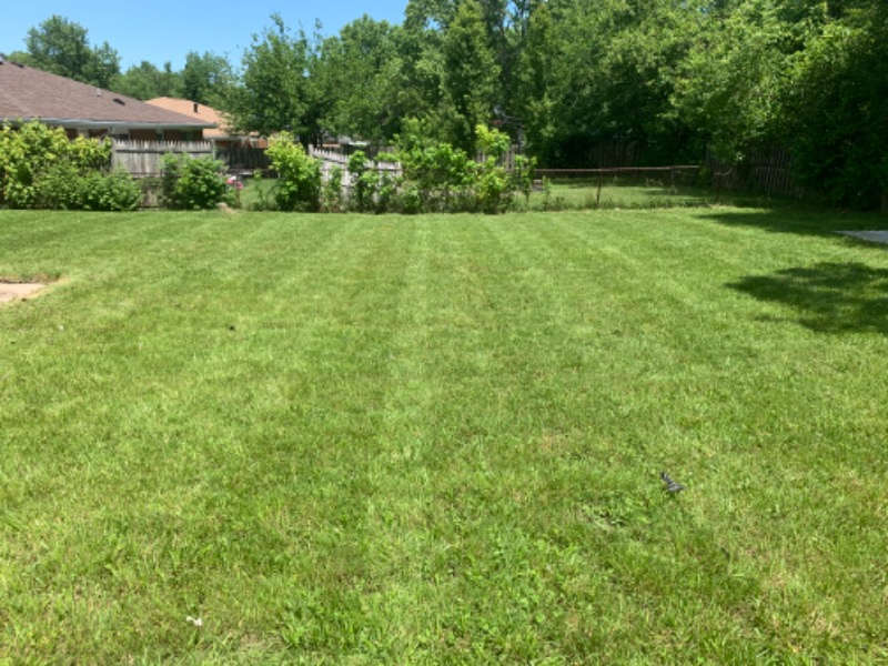 Lawn Mowing Contractor in Blue Ash, OH, 45242