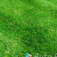 Lawn Mowing Contractor in Lancaster, CA, 93536