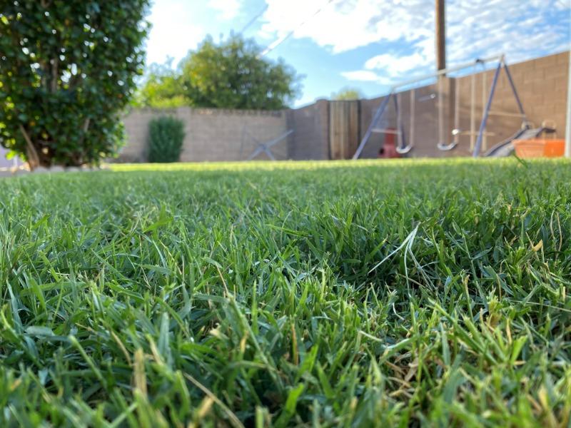Lawn Mowing Contractor in Phoenix, AZ, 85303