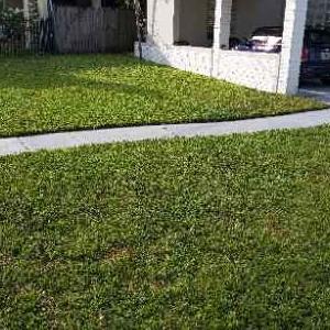 Lawn Mowing Contractor in Miami Shores, FL, 33168