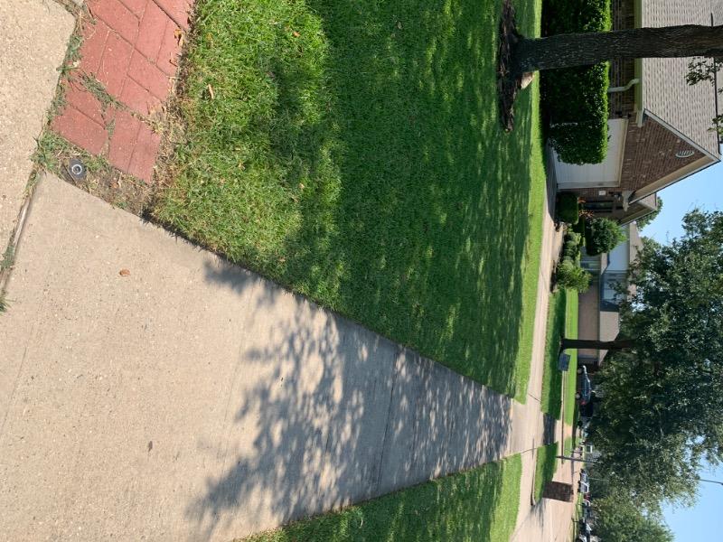 Lawn Mowing Contractor in Deer Park, TX, 77536