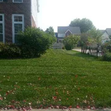 Lawn Mowing Contractor in Anderson, IN, 46060