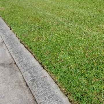 Lawn Mowing Contractor in The Woodlands, TX, 77381