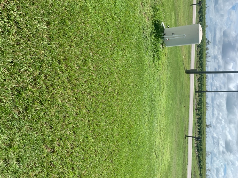 Lawn Mowing Contractor in Wauchula, FL, 33834