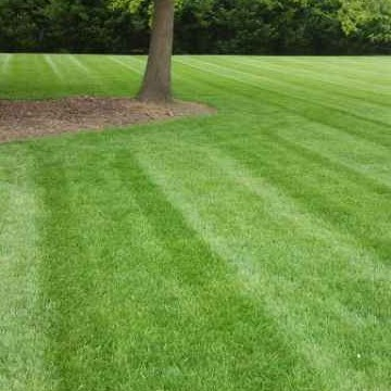 Lawn Mowing Contractor in Kernersville, NC, 27284