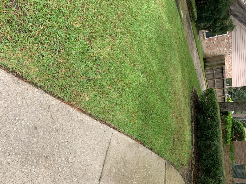 Lawn Mowing Contractor in Spring, TX, 77379