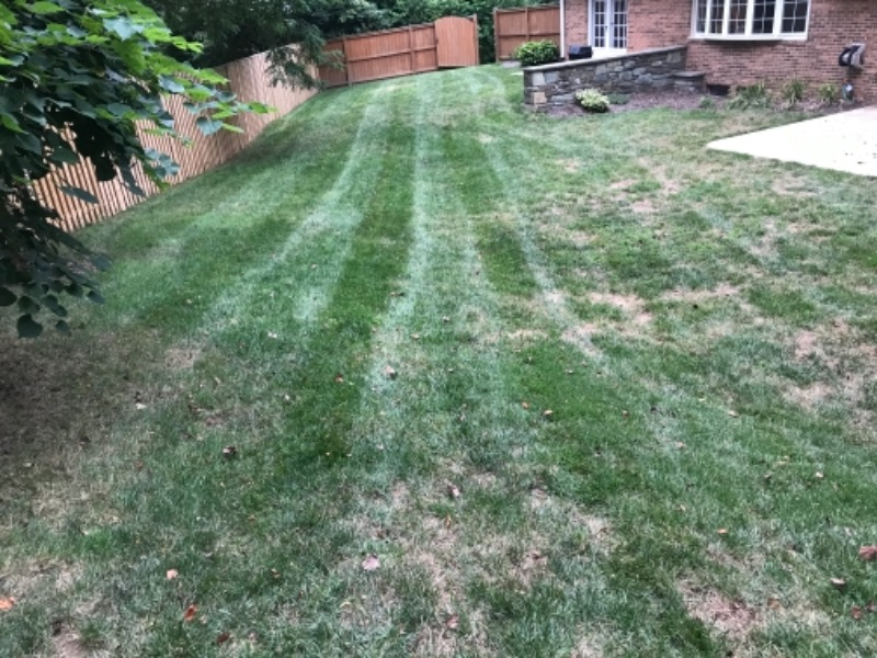 Lawn Mowing Contractor in Silver Spring, MD, 20902