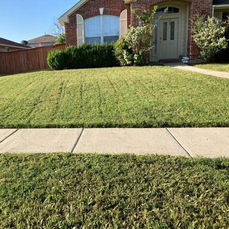 Lawn Mowing Contractor in Dallas, TX, 75237