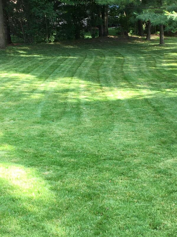 Lawn Mowing Contractor in Troy, MI, 48083
