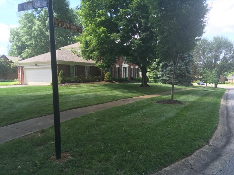 Lawn Mowing Contractor in Louisville, KY, 40243